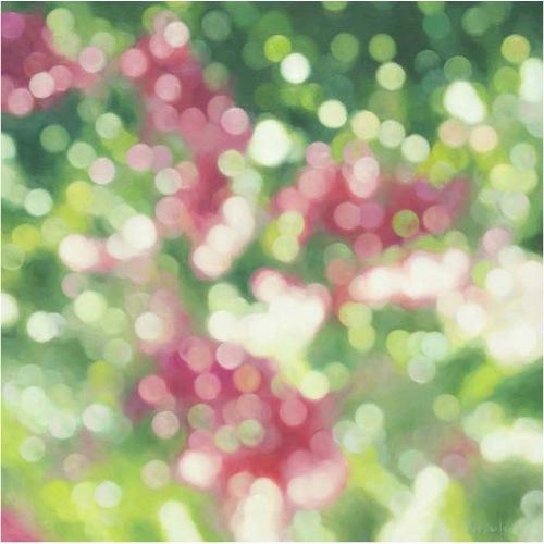 翡翠の森 2