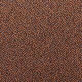 filicudi_13f041_corallo.jpg