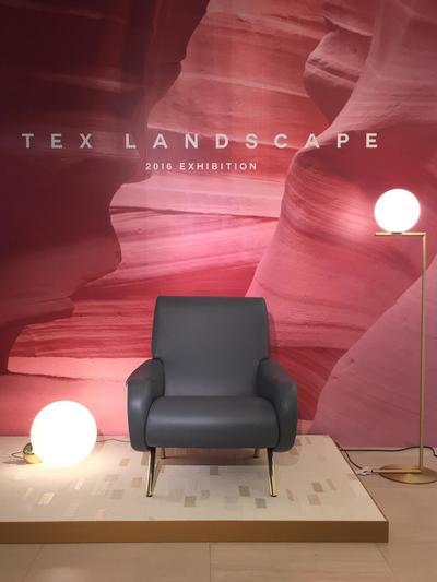 TEX LANDSCAPE
